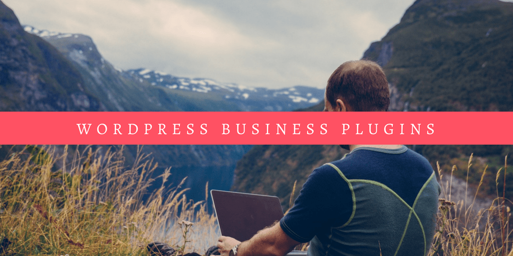 WordPress Business Plugin Guide