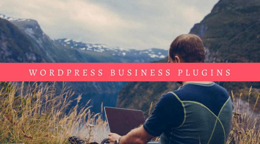 WordPress Business Plugin Guide